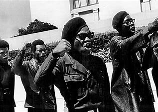Image result for images black panthers political movement