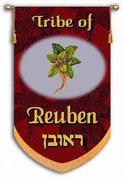 Image result for the israeli banner of the tribe of ruben
