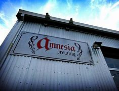 Image result for amnesia brew