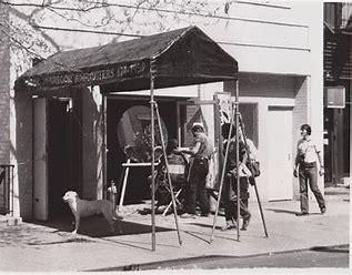 shag haircut birthplace
