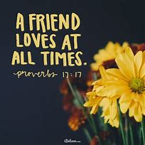 Image result for Friendship bible quotes