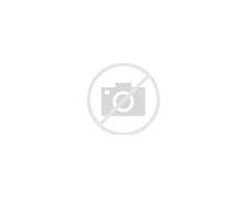Résultat d'images pour images masque anti virus jeté sur une plage
