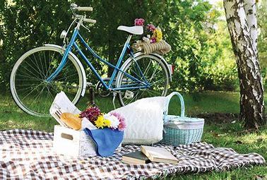 Bildresultat för picnic