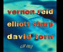 Image result for vernon reid david torn guitar oblique