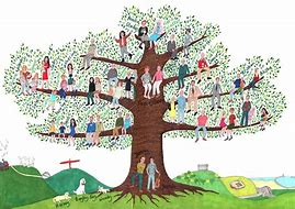 Image result for free pics of family tree
