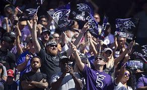 Image result for images of ravens fans