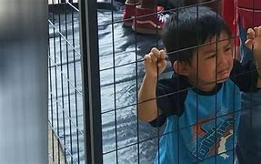Image result for children in cages us border