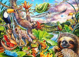 Image result for Child Nature Quote rainforest animals