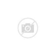 Image result for Mike Longo on Pablo