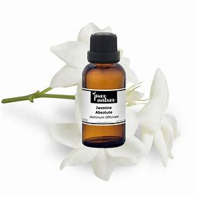 Image result for jasmine absolute