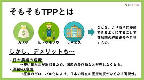 TPP に対する画像結果