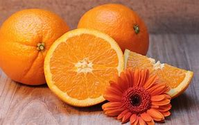 Image result for oranges images