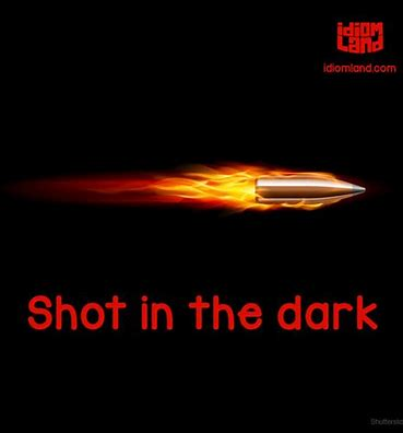 Image result for Shot In the Dark Meaning: