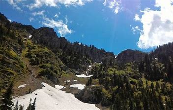 Image result for image woods of idaho panhandle
