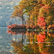Image result for Autumn Beauty