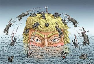 Image result for trump abandoning ship