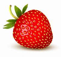 Résultat d'images pour fraise dessin