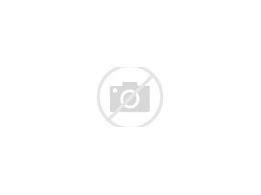 Image result for elevator speech