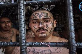 Image result for violent illegal aliens