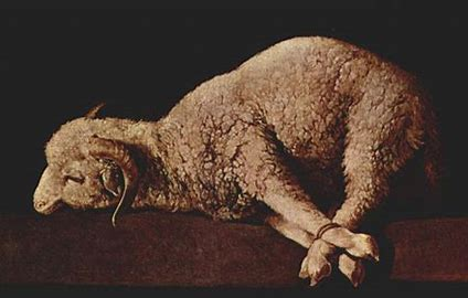Image result for sacrificial lamb