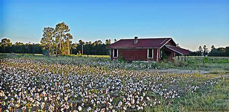 Image result for Shotgun House Sharecropper