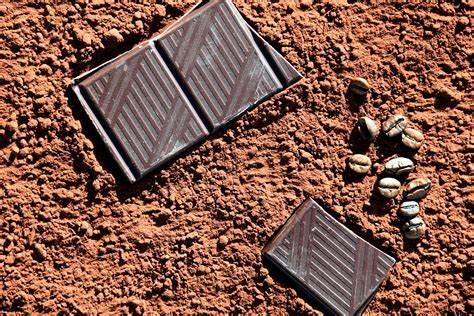 Nigeria adalah salah satu penghasil coklat terbesar di dunia