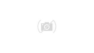 Image result for Baltimore Ravens Fans