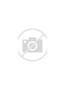 Résultat d'images pour Gueorgui Joukov