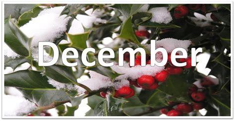 Image result for december pictures