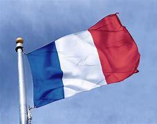 Résultat d'images pour drapeau 14 juillet