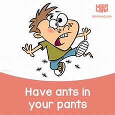 Image result for ants in one's pants