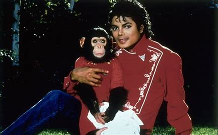 Image result for michael jackson and bubbles images