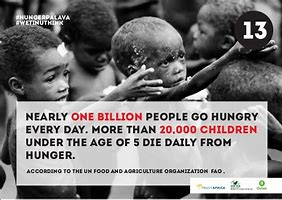 Image result for number of people starving to death every day
