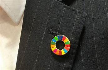 SDGバッジ に対する画像結果
