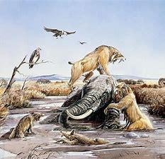 Image result for Animals Found in La Brea Tar Pits