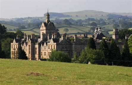 Image result for the north wales hospital denbigh images