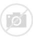 Image result for speedster fiberfab emblem