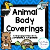 animal body coverings worksheets teaching resources tpt