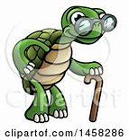 Image result for old man turtle