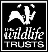 Image result for wildlife trust logo