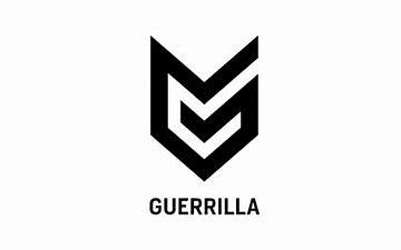 Image result for Guerilla game