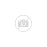 Image result for what does dead mean book