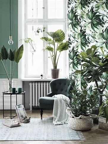 Image result for Plant Room Decor