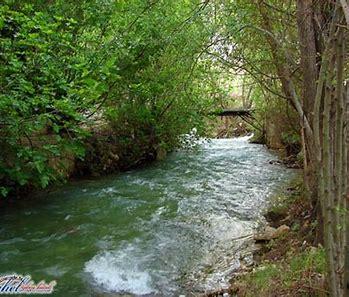 Image result for abana river damascus