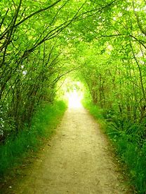 Image result for free images of path to heaven