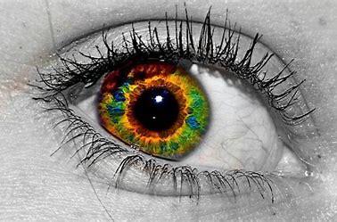 Resultado de imagen de La visión daltónica