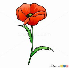 Image result for Poppy Drawing