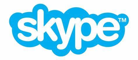 Chat or Phone via Skype - SEOFire