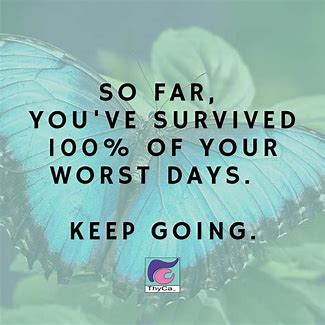 Image result for you've survived 100% of your worst days