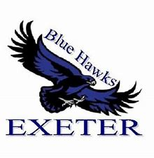 Image result for exeter bluehawks volleybal